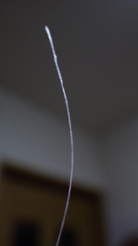 RIMG0018